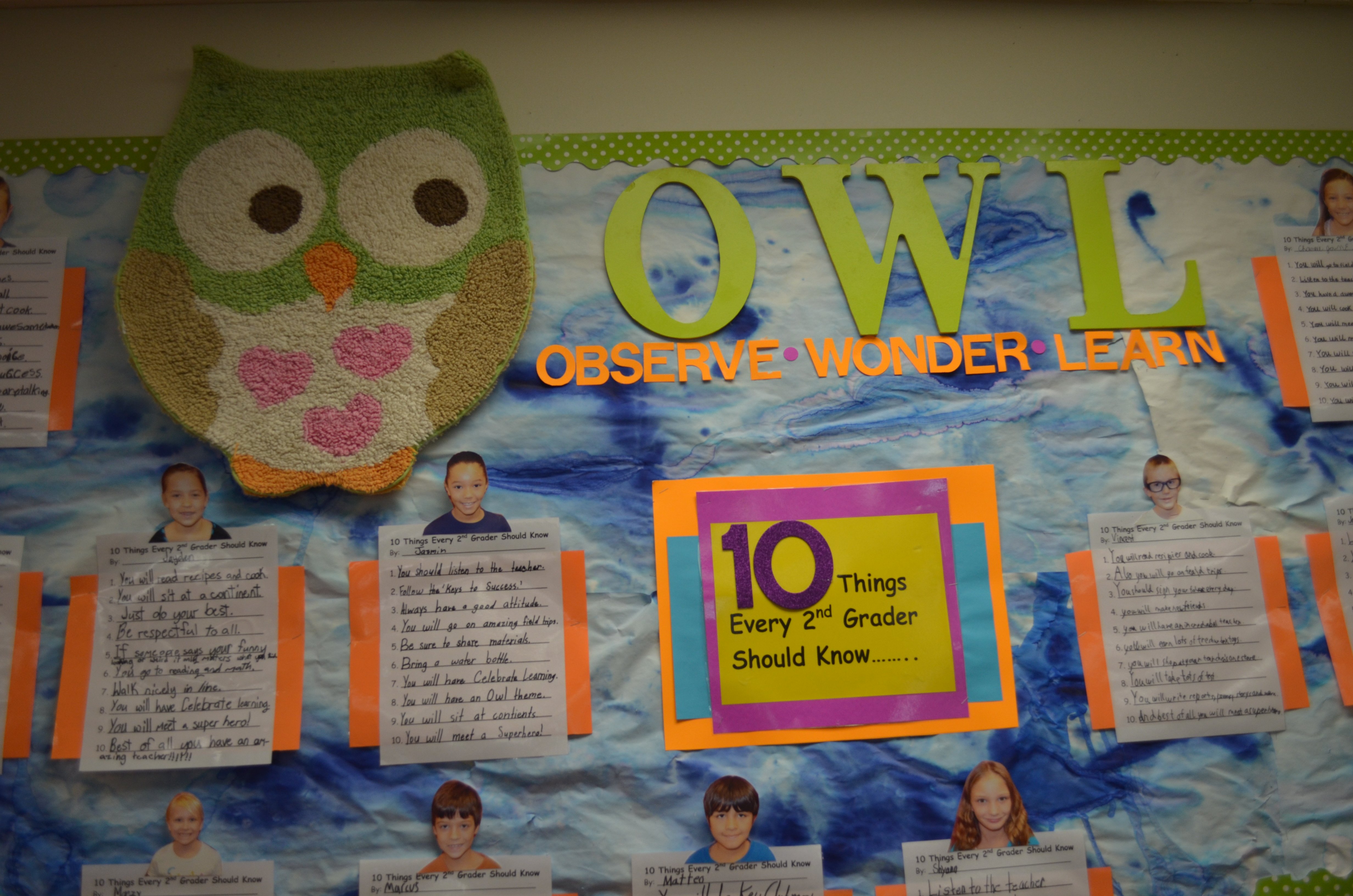 Classroom Bulletin Board Ideas With Owls ~ Hoot and holler for owl classroom decor astute