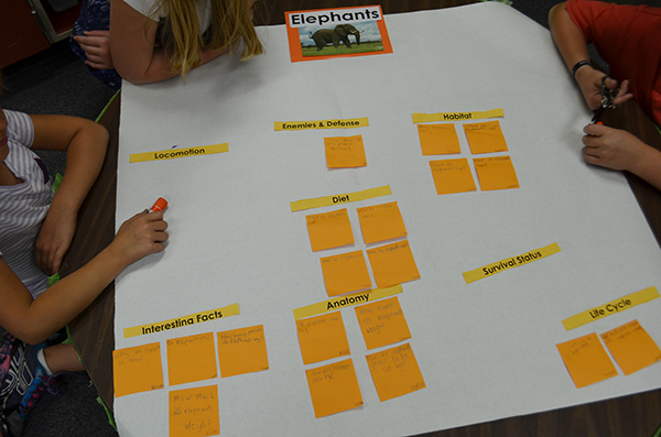 Sorting questions--research_WEB