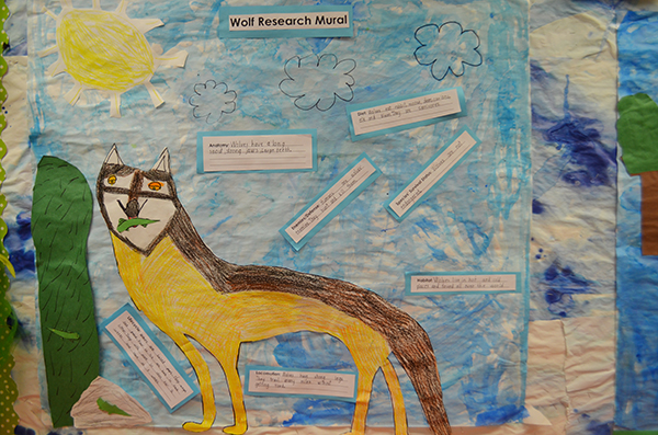 Wolf research mural_WEB