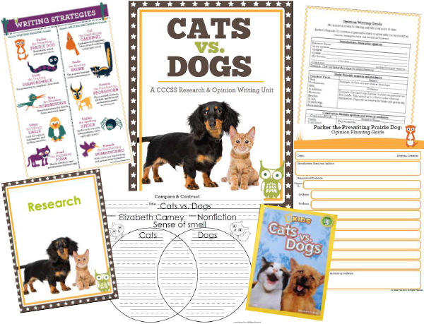 persuasive essay dogs or cats Persuasive essay body paragraph why cats are better than dogs conclusion in conclusion, cats are much better pets than dogs to begin with, cats are more independent than dogs.