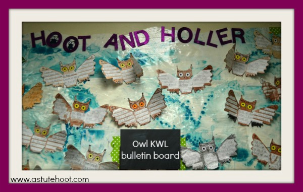 Owl KWL bulletin board